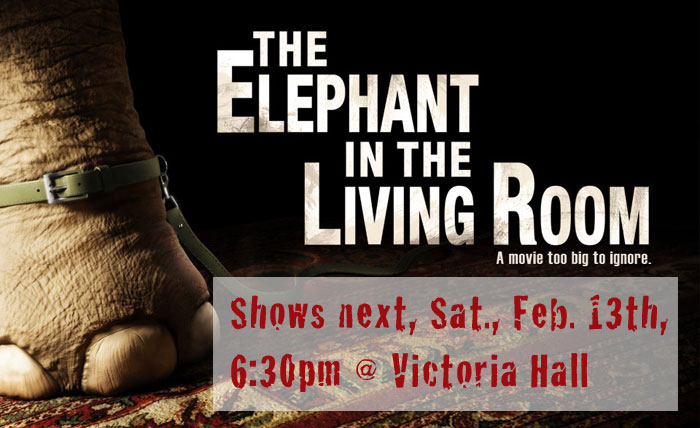 Special Section The 25th Sbiff World Premiere Of Elephant In The Living Room 39 S Tim Harrison